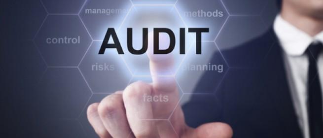 audit perusahaan